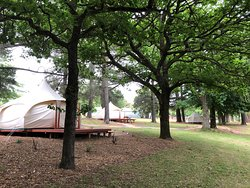 3 Glamping Tents ... plenty of space in between