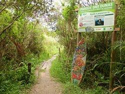 Trilha pelo Parque das Dunas para a Praia da Joaquina inicia nas proximidades da Pousada Porto da Lagoa