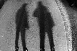 WE... the walkers