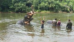 Kitti Raft - Private Day Tours