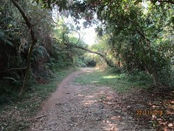 Coloane Walking Trail