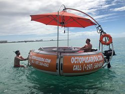 Octopus Aruba Rent Your Own Boat