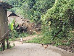 Lahu Village Simplicity