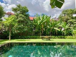 Beautiful large swimming pool
