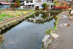 第8の霊場の菖蒲池