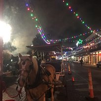 Natchitoches Carriage Company