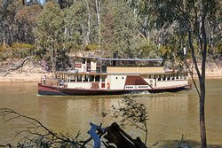 Murray River Paddlesteamers - Pride of the Murray