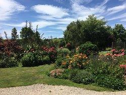 Eyebright garden