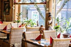 Bambus Garten Gummersbach