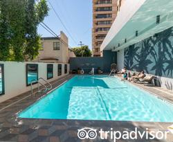 The Pool at the Kimpton Hotel Palomar Los Angeles Beverly Hills