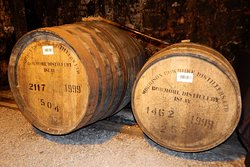 Casks in No. 1 Vaults that we sampled