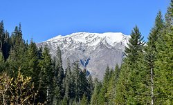 Mount St. Helens from June Lake trail.