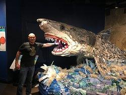 Plastic ocean debris sculpture