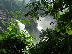 Athirapilly Falls II