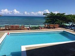 view from backyard Red Fox Villa