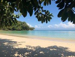 Amazing beach and water