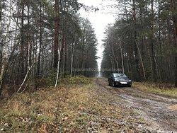Treblinka camp