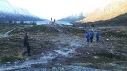 Fjordtour/sightseeing