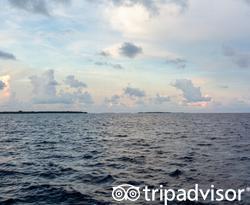 Dolphin Sunset Cruise at the Soneva Fushi