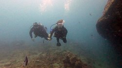 Diving with Udo