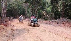The muddy woodland tracks