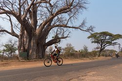 Bicycle Tours - Victoria Falls with Wild Horizons