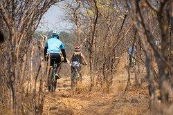 Victoria Falls Bike Tours - Wild Horizons