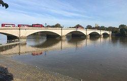 London Buses over Putney Bridge at low tide