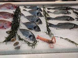more fresh fish choices