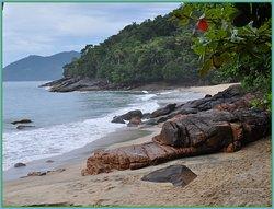 para chegar a esta praia só existem dois modos : de barco ou na caminhada por esta imensidão de verde  !  Não deixe de conhecer com o pessoal da ecovaletur .