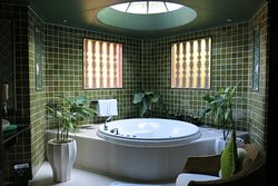The amazing jacuzzi and shower