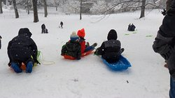 I love going to Central Park during heavy snow. It transforms the park into Child's playground.