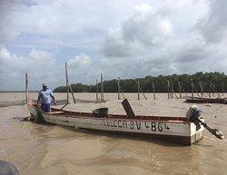 Suriname Commewijne rivier