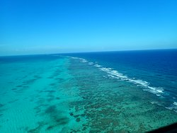 The reef that runs the whole length of Belize. You could see it from the front porch.