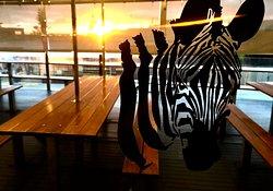 Zebra Bar Bistro