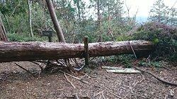 奥山雨山自然公園