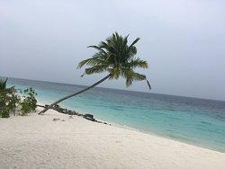 Paradise on earth ...