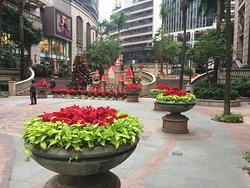 Grand Millennium Plaza