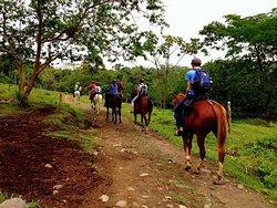 Horseback riding Tour- La Fortuna