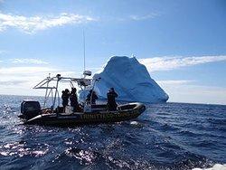 Great iceberg action