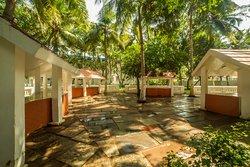 Mango Grove - Buffet Area