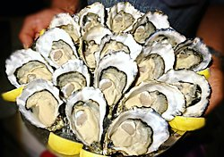 Jet fresh oysters from France and Ireland