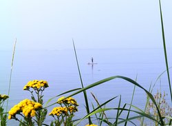 Stand-Up Paddle Boarding In Davis Bay