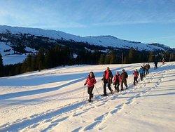 Das Salwideli ist Ausgangspunkt vieler Winter- und Schneeschuh-Wanderwege.