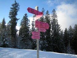 Die Winterwanderwege beginnen direkt vor dem Haus.