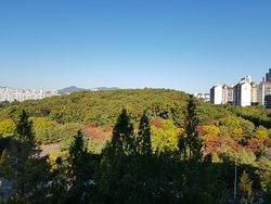 Seongnam Jungang Park
