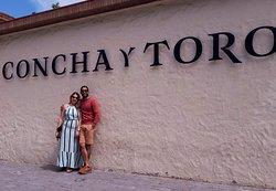 CONCHA Y TORO  Small-Group Half-Day Concha y Toro Vineyard Tour with Transportation  https://www.tripadvisor.com/AttractionProductDetail-g294305-d11485935-Small_Group_Half_Day_Concha_y_Toro_Vineyard_Tour_with_Transportation-Santiago_Santiago_Metropolitan_Region.html