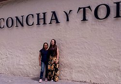 Premium Concha y Toro Winery Tour with Wine and Cheese Tastings from Santiago  https://www.tripadvisor.com/AttractionProductDetail-g294305-d11483647-Premium_Concha_y_Toro_Winery_Tour_with_Wine_and_Cheese_Tastings_from_Santiago-Santiago_Santiago_Metropolitan_Region.html