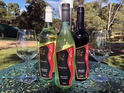GYMPIE REGION'S WINERY DINGO CREEK WINERY. HAS A GREAT SELECTION OF WINES