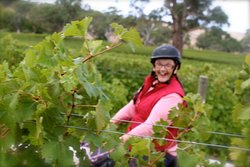 The famous Barossa Valley, SA. Come ride with us through the vineyards, along the Barossa Ranges and onto lunch at cellar doors. This five day/four night adventure highlights this iconic region of Australia on horse back.